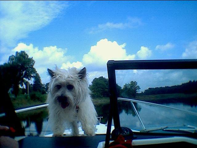 bailey boating