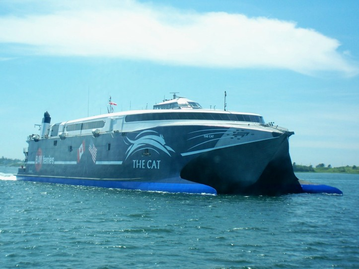 The_cat_ferry